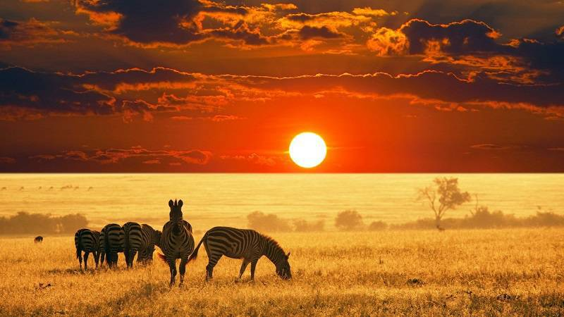 UNWTO: Africa Remains the Least Visited Continent