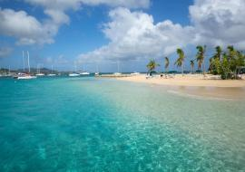 The U.S. Virgin Islands has introduced the first phase of an online portal